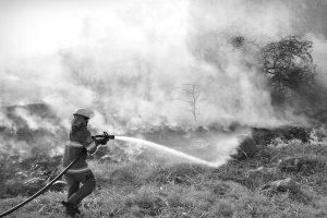 Recomendaciones para evitar incendios forestales