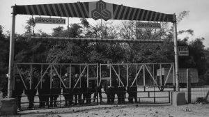 """El sindicato del Ingenio Ledesma denuncia """"persecución"""" en el despido de 50 trabajadores"""