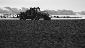 """Una respuesta al artículo """"Sobre Monsanto y los transgénicos"""""""