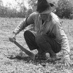 Puesteros, crianceros y campesinos trashumantes: reclamos y resistencias