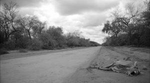"""""""Gran Chaco"""", una mirada sobre un genocidio sin armas"""