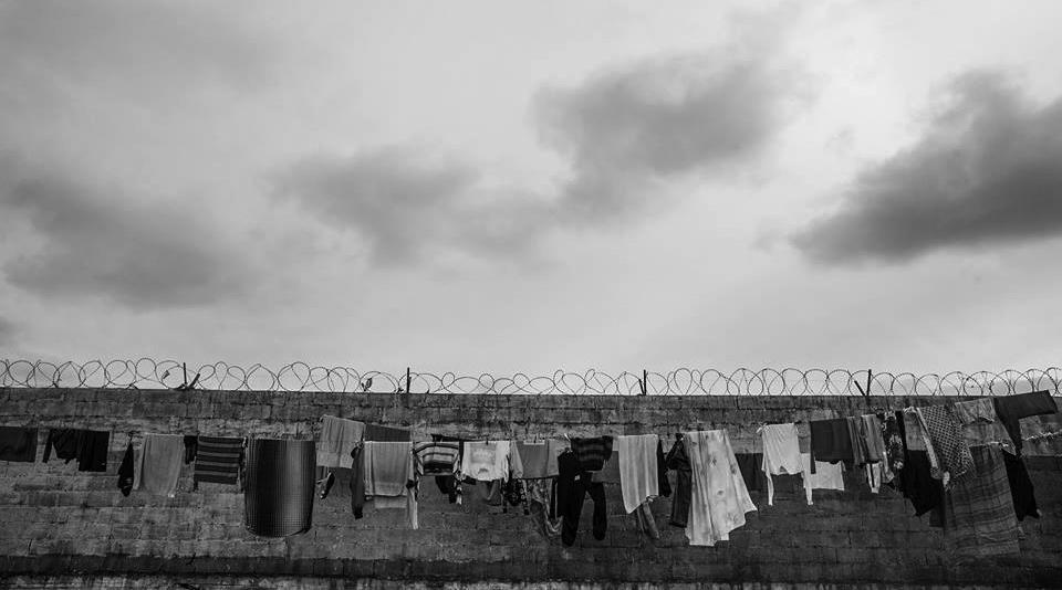 carceles-presos-fin-del-mito-porcentajes