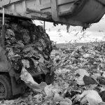 Basura, producción y consumo
