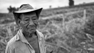 ¿Cuántas vidas cuestan la paz de Colombia?
