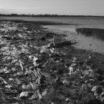La mar turbia