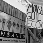 Monsanto declarado culpable por daños a la salud, el ambiente y la libertad científica