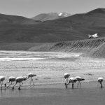 La Rioja: se organizan para defender una reserva provincial