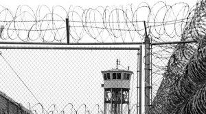 Sobre sistemas penales