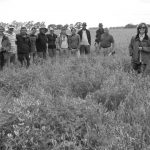 Guaminí: la alternativa agroecológica