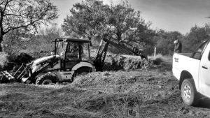La Provincia deforestó El Montecito, el bosque nativo colindante a la Facultad de Turismo