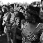 ¿Hasta cuándo? Justicia brasileña sigue favoreciendo a ganaderos