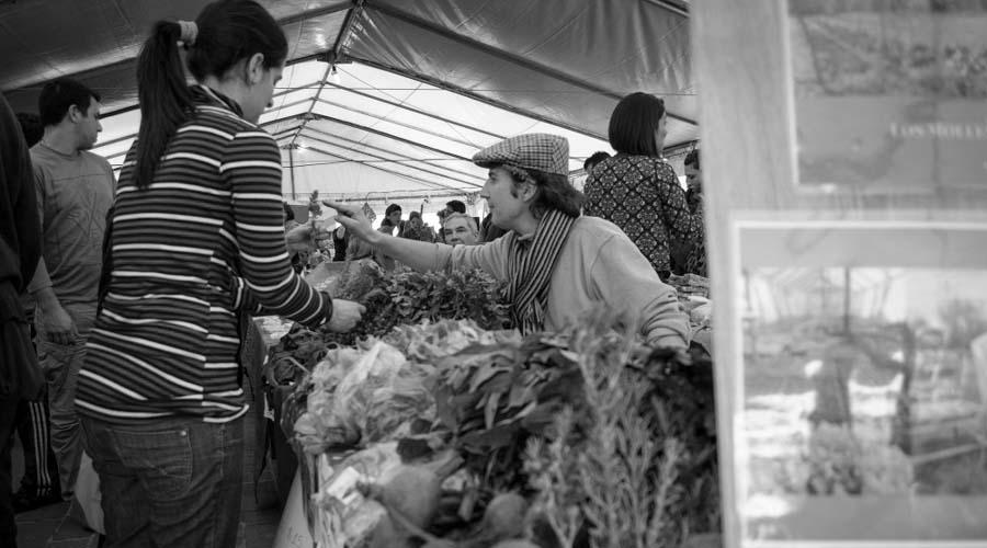 Expo-agroecologica-Colectivo-Manifiesto-Alta-Gracia-01