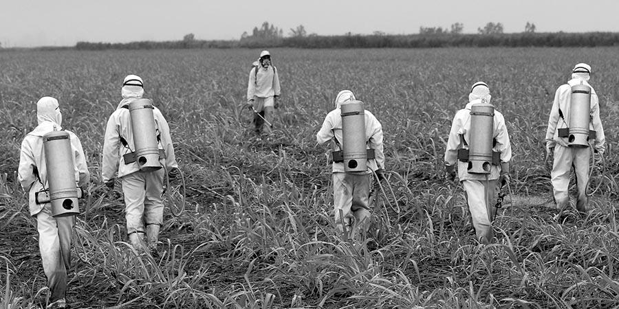 ciencia-compra-Roundup-Monsanto-acusacion