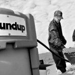 Avanzan los juicios contra Monsanto por casos de cáncer y por ocultar los peligros del glifosato