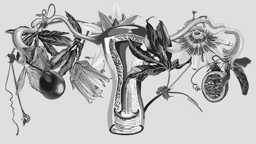 Giada-Fiorindi-Botanical-uterus