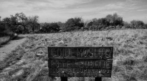 Un nuevo plan agroforestal para Córdoba