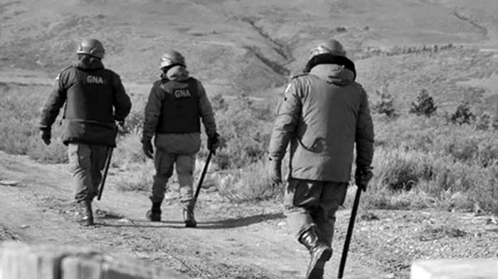 gendarmeria-cushamen-chubut-santiago