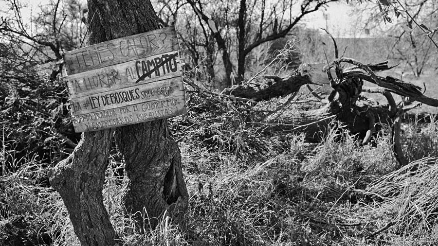 ley-agroforestal-cordoba-bosques