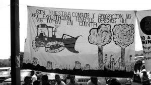 Chiapas en contra de la minería y la construcción de represas