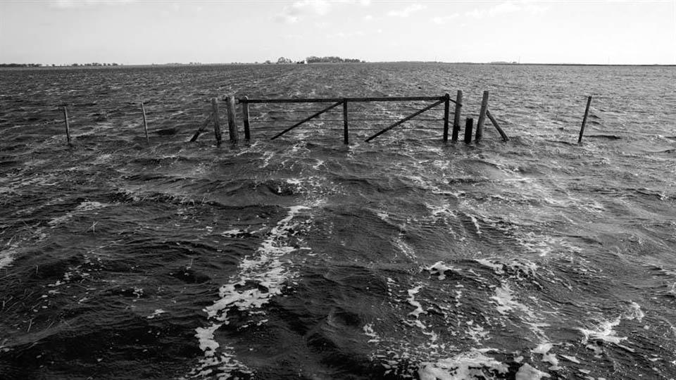inundaciones-monocultivo-v-rizzi-soja