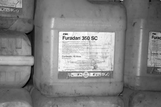 mandarina-furadan-agrotoxicos-corrientes