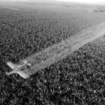 Una reforma agraria al revés