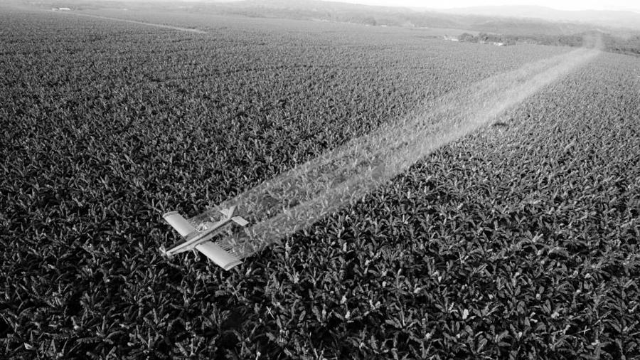 reforma-agraria-al-reves-agrotoxicos
