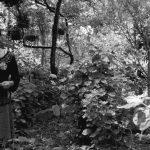 'Viva el Monte', el alimento nativo como esencia de otro horizonte de vida