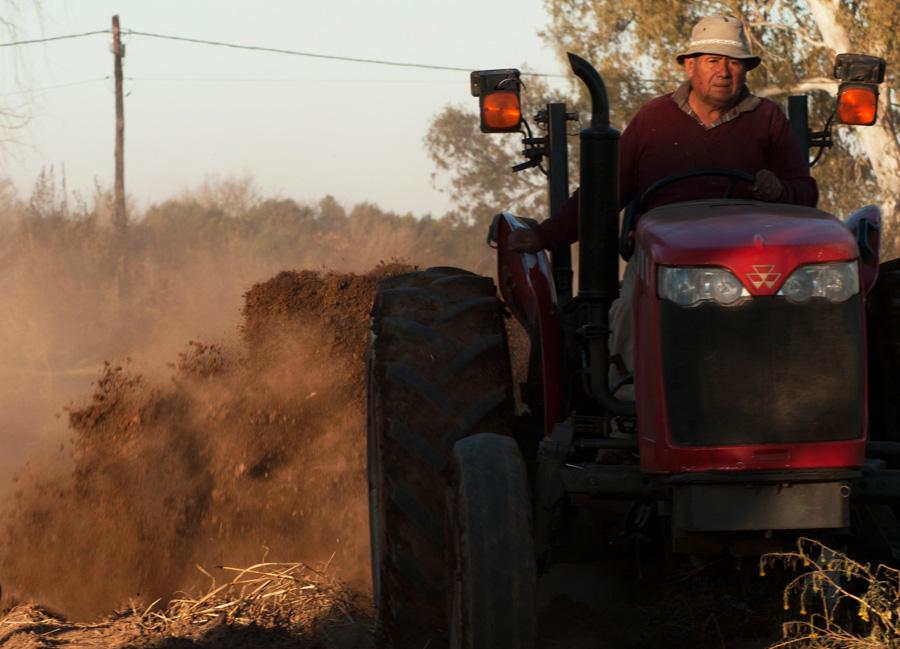 Agroecologico Coop San Carlos 04