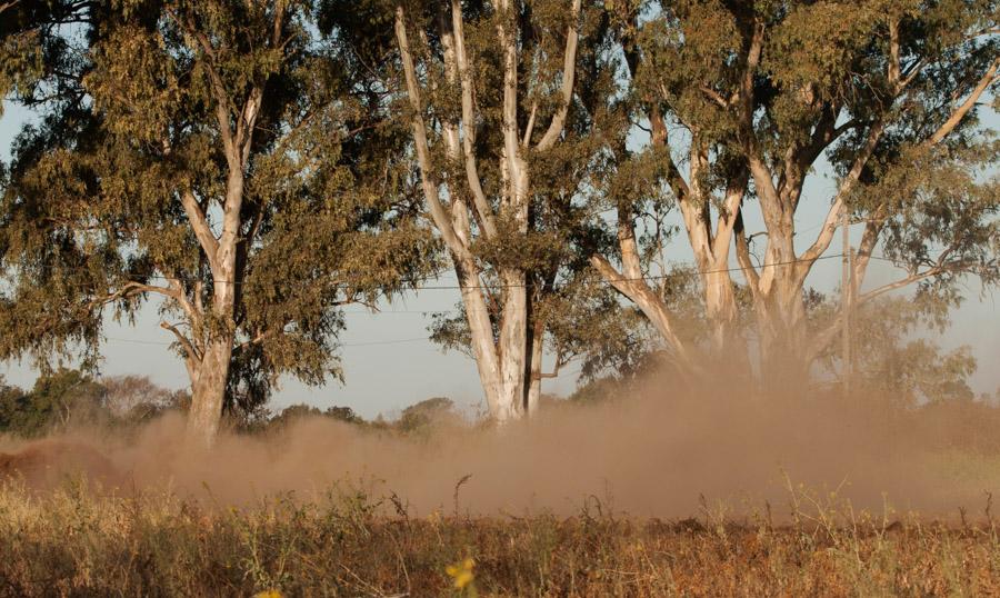 Agroecologico Coop San Carlos 07
