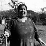 Mapuche, gente de esta tierra