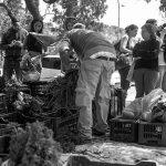 Cuatro años de alimentos sanos y organización en Córdoba