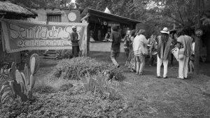Intercambio de Semillas: espacios de conciencia y lucha por la Soberanía Alimentaria