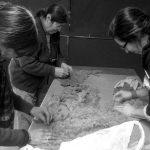 Hilanderas y tejedoras de la Patagonia buscan potenciar la comercialización asociada