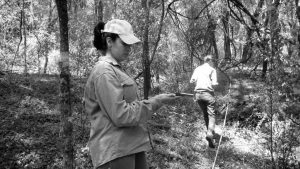 Biopiratas en Córdoba: la batalla por los yuyos
