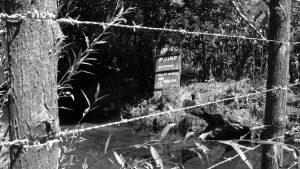 Denuncian a country de Alta Gracia por obras ilegales en arroyo