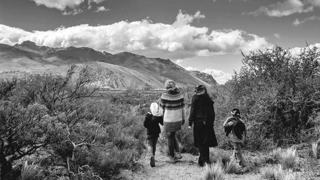 mapuche-lucha-resistencia-territorio-patagonia-extractivismo