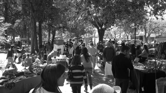 Feria-villa-de-las-rosas-cordoba-traslasierra-productores-02