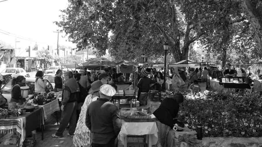 Feria-villa-de-las-rosas-cordoba-traslasierra-productores-03