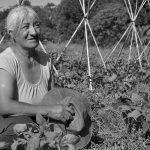 La agricultura originaria recreada en la agroecología