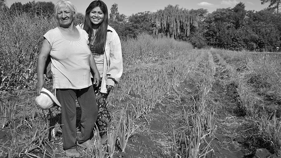 rosa-toloba-agroecologia-1campesina-alimentos-sanos