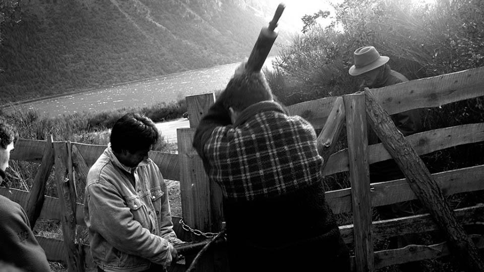 5-facundo-jones-huala-bartoliche-juicio-mapuche-pueblo-mapuche-copia