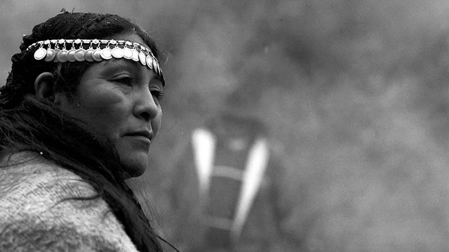 7-facundo-jones-huala-bartoliche-juicio-mapuche-pueblo-mapuche-copia
