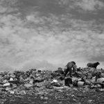 El daño colateral de los basureros a cielo abierto