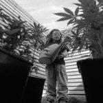 """Cannabis medicinal: """"La negación que tiene la medicina tradicional es por intereses creados"""""""