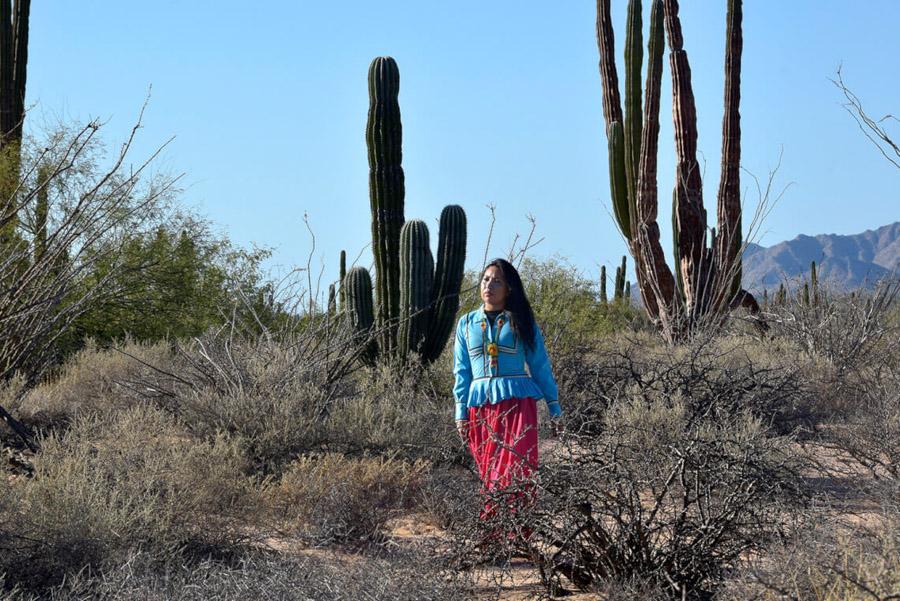 flores del desierto gm 07