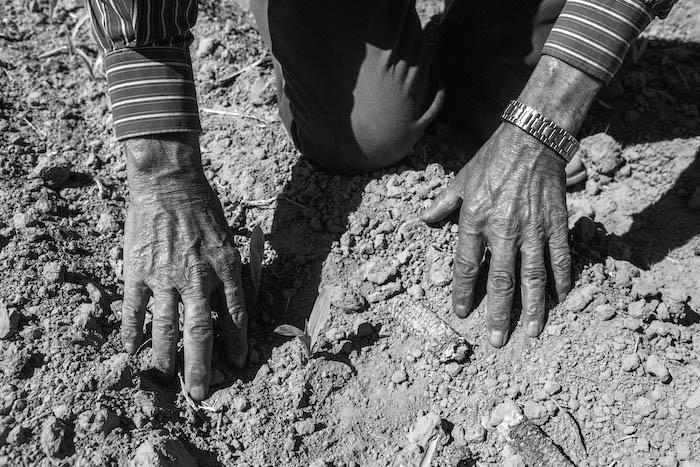 agroecologia-agronegocios-sequia-saberes-extractivismo