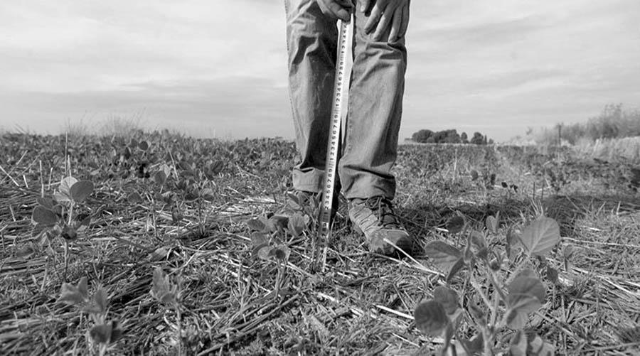 agroecologia-campo-agronegocios-desarrollo-sequia-saberes-extractivismo
