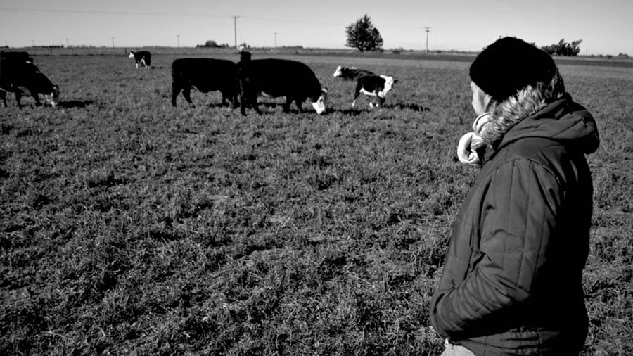 coronel-moldes-ganaderia-agrocologia-luciana-campo