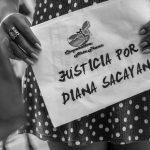 Continúa el juicio por el travesticidio de Diana Sacayán